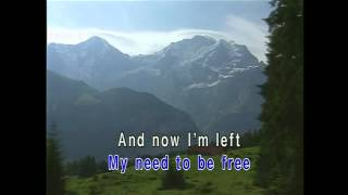 I Drive Myself Crazy (Karaoke)