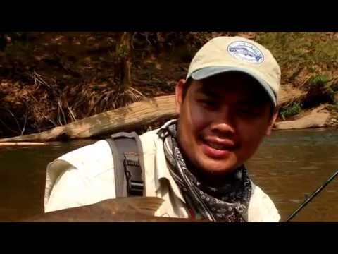 Thailand , Fly Fishing @ Chiang Mai