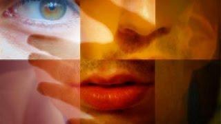 Los Sentidos, la vision, el oido, el olfato, el tecto, el gusto - Introducción a la Psicología - 4