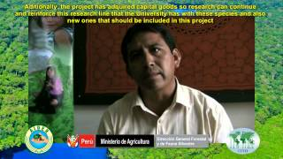 Pd 512:08 Utilization Of Lesser Used Timber Species In Peru Video