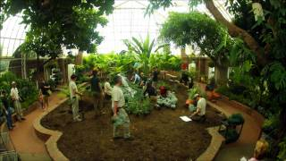 An Installation of Mammoth Proportions: Summer Flower Show Behind the Scenes