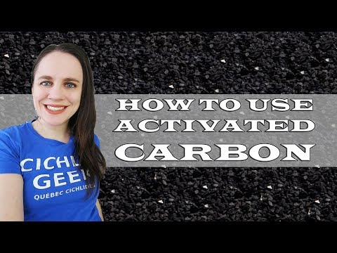 Should You Use Activated Carbon In Your Aquarium?