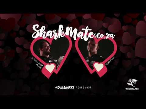 Sharks Valentines Day