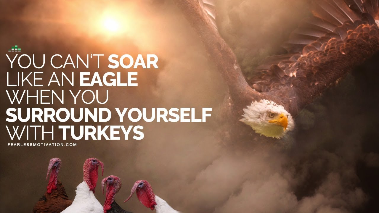 You Can't Soar Like An Eagle When You Surround Yourself With
