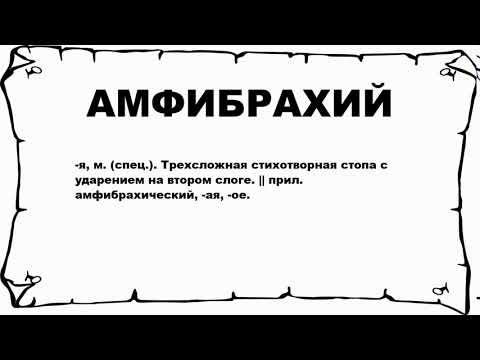 АМФИБРАХИЙ - что это такое? значение и описание