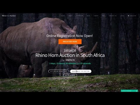 Breeder to hold first 'legal' rhino horn auction in South Africa