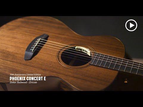 Breedlove 30th Anniversary Phoenix Concert E