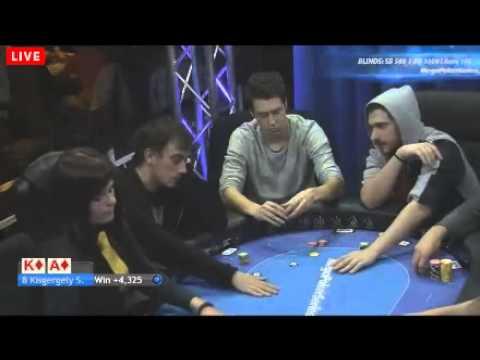 mega poker series vienna day 29th january 2015