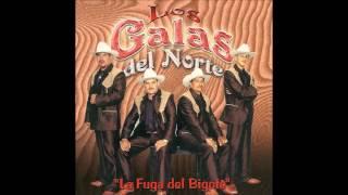 Los Galas del Norte - Andres Morales