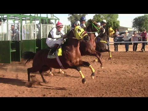Carreras de Caballos en El Hipódromo de Rayón 14 de Abril 2017