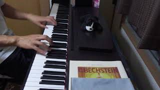 一青窈 - ハナミズキ : ピアノでJ-POP弾いてみた