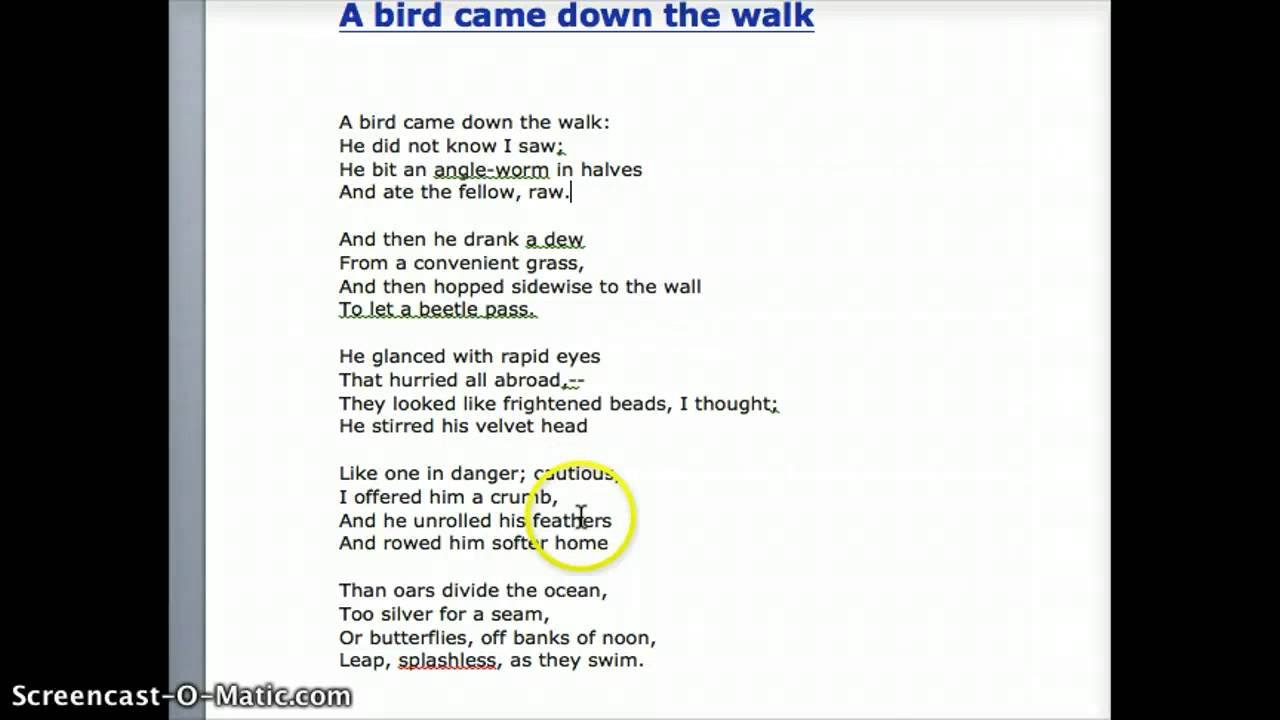 analysis of a bird came down To make a detailed description and analysis of her life  analyze the eco-feminist  style in dickinson's poems  a bird came down the walk.