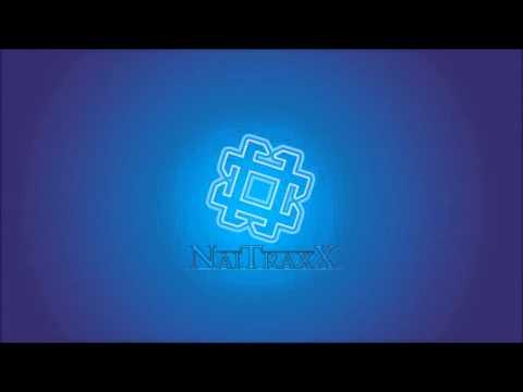 The Spotnicks -  Time Is Tight [DJ Naitraxx SpeedCore Mix]