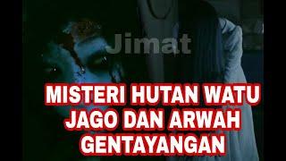 Download Mp3 Misteri Hutan Watu Jago Dan Arwah Gentayangan