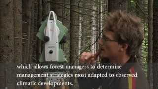 MANFRED - Management strategies to adapt Alpine Space forests to climate change risks