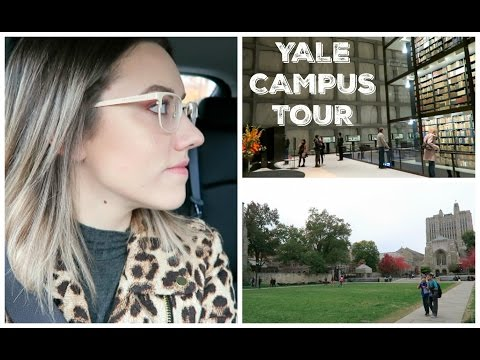 YALE VLOG (NEW HAVEN, CT) | Katie Carney