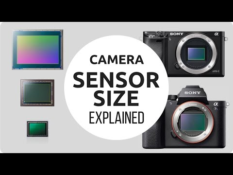 Camera Sensor Size Explained