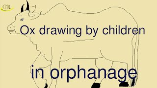 how to draw | how to drawing | Ox (cow) drawing by children in orphanage 1 | គំនូរសត្វគោ