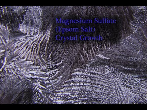Crystal Growth - Magnesium Sulfate (Epsom Salt)