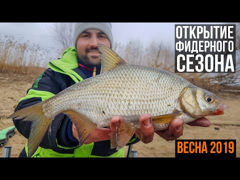 Открытие фидерного сезона 2019. Москва-река дарит подарки! Леонидыч на рыбалке.