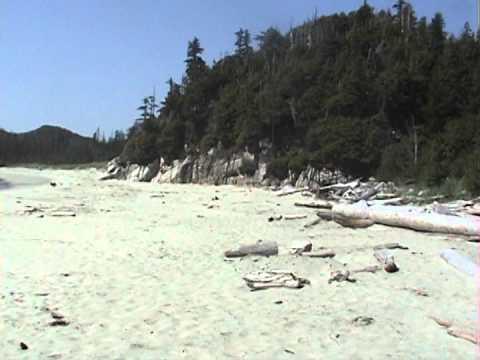 Image result for Calvert Island youtube