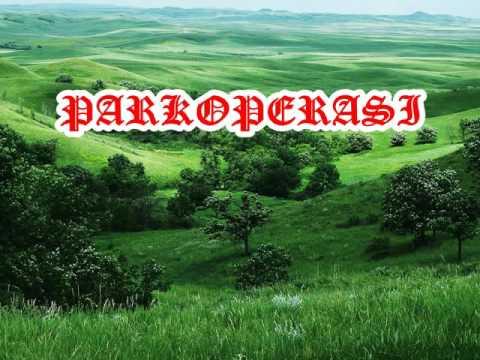 PARKOPERASI KARAUKE BATAK