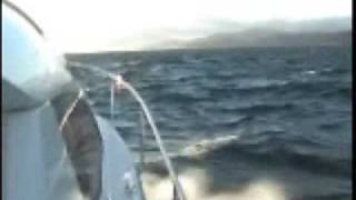Motorcat 29 in rough seas catamaran adavantage