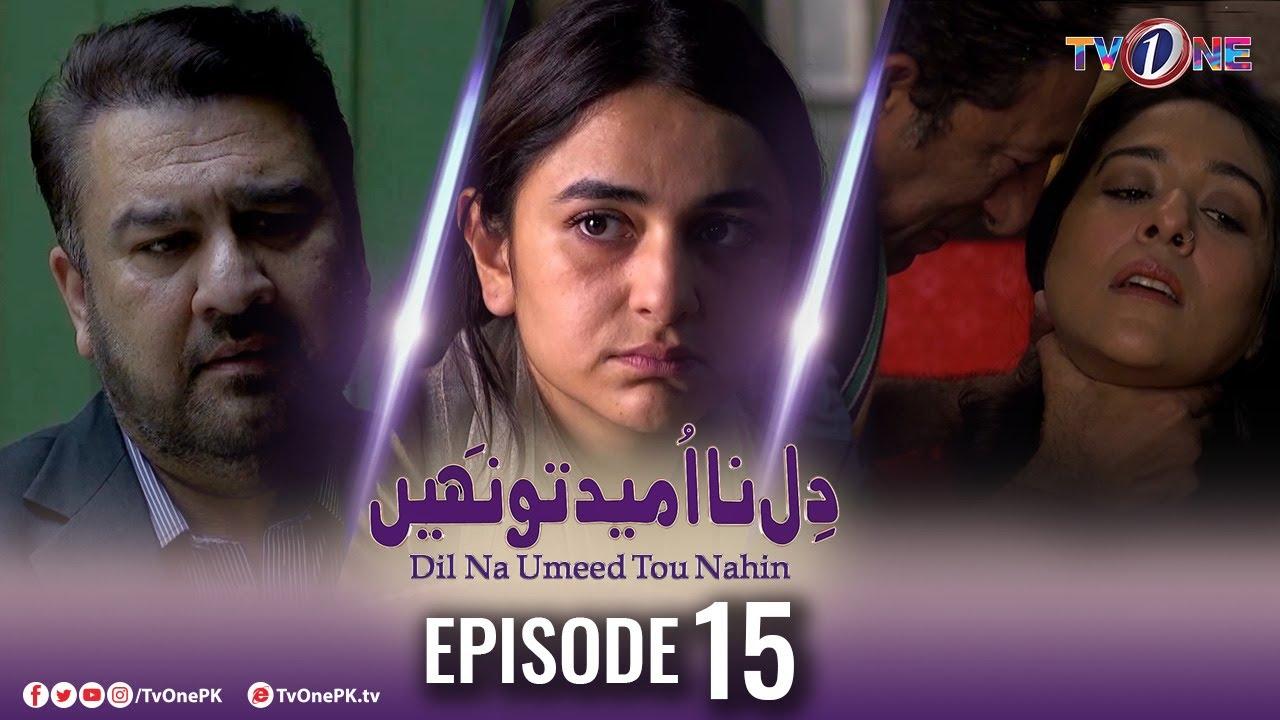Download Dil Na Umeed Toh Nahi   Episode 15   Tv One Dramas
