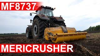 Трактор MASSEY FERGUSON 8737 с финским ротоватором MERICRUSHER MJS-241DTG расчистка залежных земель