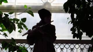 Игра на флейте (обучение). Сицилиана Бах