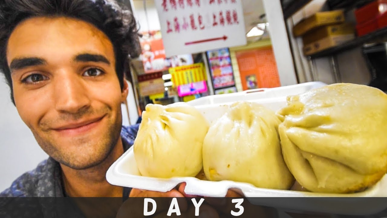 LIVING on STREET FOOD for 24 HOURS in NYC! (Day #3)
