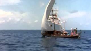 03 1967 Коралловые джунгли   Подводная одиссея команды Кусто