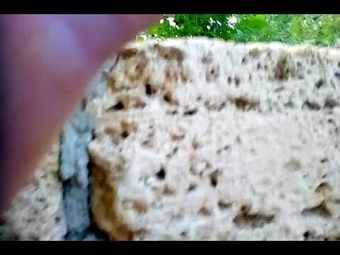 Строительство Сливной Ямы из Бута и камня Ракушки