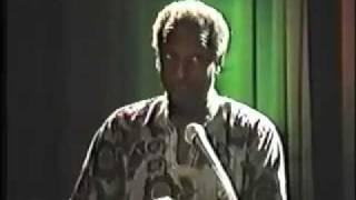 Pan Afrikanism vs The New World Order 2
