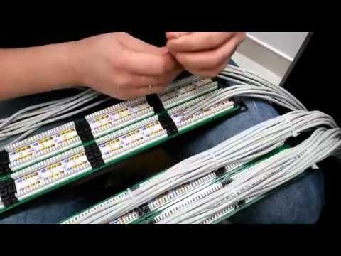 обжим кабеля в патч панель