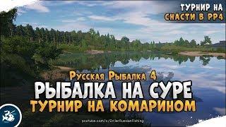 Риболовля на річці Сура. Російська Рибалка 4 [Стрім]