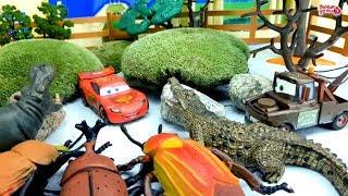 Машинка Молния Маквин и его друзья против жуков - великанов.Умные Дети ТВ