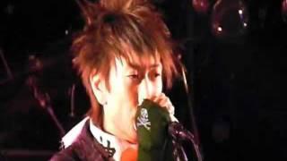 THE BONGS - 馬鹿になれ LIVE!