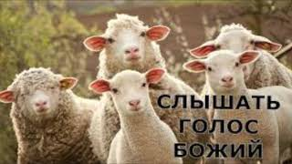 ГДЕ ЖИВЕТ БОГ? - Вячеслав Бойнецкий