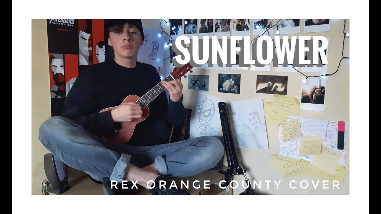 sunflower-rex-orange-county-ukulele-cover-conorbee