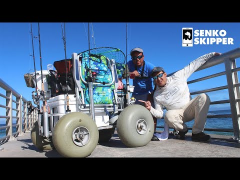THE ULTIMATE PIER/BEACH FISHING CART