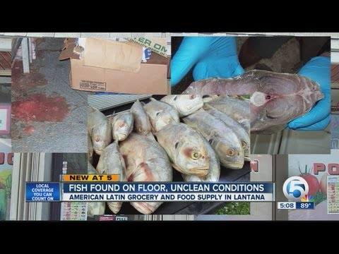 Unsanitary conditions at Lantana seafood market