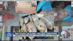 Unsanitary conditions at Lantana seafood market