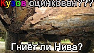 видео Баргузин: инструкция по применению и отзывы садоводов