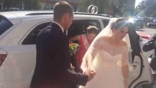 Свадьба в Кропивницком