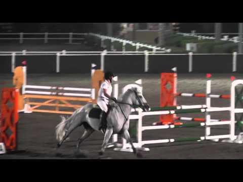 Dubai Polo Club Competition