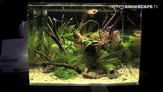 The Art of the Planted Aquarium 2017 - Nano tanks 17-19