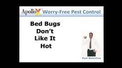 Effective Bed Bug Treatment Techniques