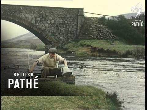 Pearl Fishing (1961)