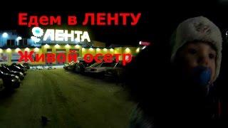 Лента Живой осетр Колбаса Покупка памперсов